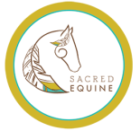 Sacred Equine - Balance, Strengthen, Heal. Whole Body Integration - for your horse.   Allison Wetter - Structural Integration Practioner